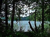 在湖岸 免版税库存照片