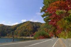 在湖旁边的路有秋天树叶子的 库存照片