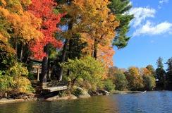 在湖月桂树,柏克夏,马萨诸塞的秋叶 库存图片