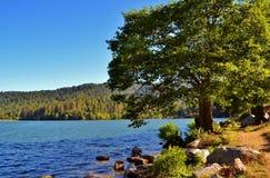 在湖格里附近的可爱的风景 库存图片