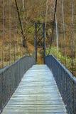 在湖森林的,秋天风景的移动的桥梁 免版税库存图片