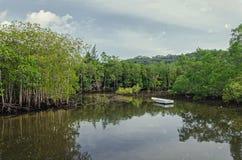 在湖的一条小船在森林里 库存图片