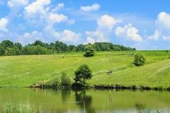 在湖的五颜六色的树有反射的 免版税库存照片