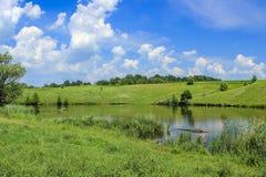 在湖的五颜六色的树有反射的 免版税库存图片