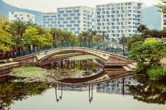 在湖的人行桥在公园 图库摄影