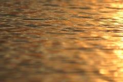 在湖的光 库存图片