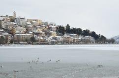 在湖的冬天场面 免版税库存照片