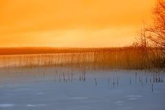 在湖的冬天日落 免版税库存照片
