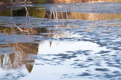 在湖的冰熔化和反射 图库摄影