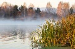 在湖的冷淡的早晨, 免版税图库摄影