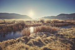 在湖的减速火箭的被定调子的有雾和冷淡的早晨大提顿峰Na的 免版税库存照片