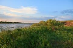 在湖的初夏早晨。 免版税图库摄影