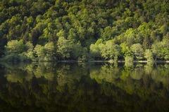 在湖的反射,孚日省,法国 免版税图库摄影