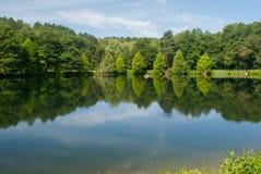 在湖的反射 库存图片
