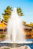 在湖的喷泉在基辅,乌克兰附近的风景公园Mezhigirya 库存照片