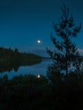 在湖的夏天晚上 库存图片