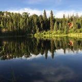 在湖的夏天 免版税图库摄影