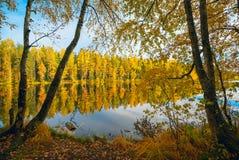 在湖的岸在一个明亮的晴天 秋天横向 库存照片
