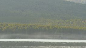 在湖的岸的美丽的蓝色清楚的水 森林的湖的看法 免版税库存图片