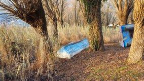 在湖的岸的被放弃的木小船,芦苇的,秋季 库存图片