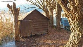 在湖的岸的被放弃的木小船,芦苇的,秋季 免版税库存图片