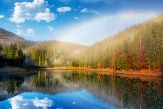 在湖的彩虹在有雾的云杉的森林里 图库摄影