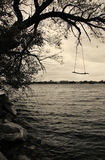 在湖的摇摆 免版税库存照片