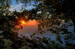 在湖的日出有光秃的树的反射的在水中 免版税库存图片