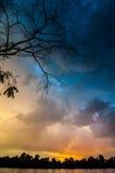 在湖的日出有光秃的树的反射的在水中 库存图片