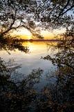 在湖的日落,从森林边缘的看法与反射a 免版税库存图片