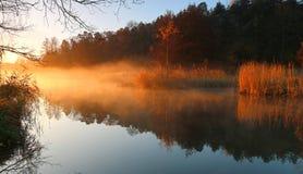 在湖的早晨光每有雾的早晨 图库摄影