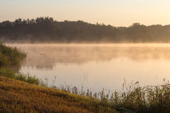 在湖的早晨雾 库存图片