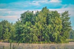 在湖的早晨风景 免版税库存图片