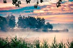 在湖的早晨风景 免版税库存照片