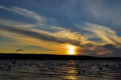 在湖的早晨 免版税图库摄影