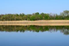 在湖的春天,晴天 免版税库存图片