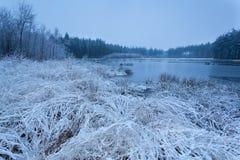 在湖的有薄雾的冷淡的早晨 免版税库存照片