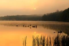 在湖的有雾的日出 库存照片
