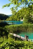 在湖的木桥在Plitvice国家公园 美丽的绿色绿松石自然本底 免版税库存照片