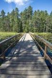 在湖的木桥梁 免版税库存图片