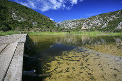 在湖的木脚桥梁 免版税库存照片