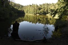 在湖的树反射山的 免版税库存照片