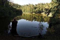 在湖的树反射山的 免版税库存图片