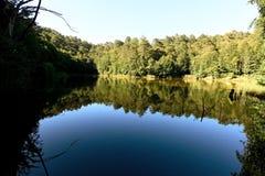 在湖的树反射山的 库存照片