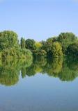 在湖的森林反射 库存照片