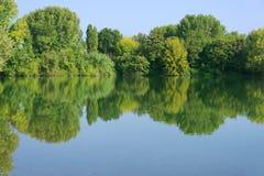 在湖的森林反射 免版税图库摄影