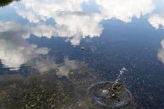 在湖的波浪 免版税库存图片
