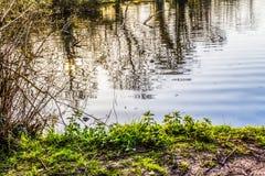 在湖的波纹 免版税库存图片