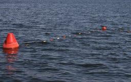 在湖的浮体 库存照片