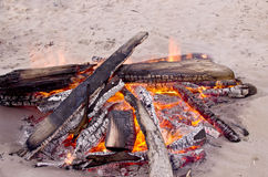 在湖的海滩营火有沙子岸的 在白色沙子的灼烧的木头自白天 免版税库存照片